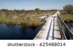 Northern Dutch Nature On The...