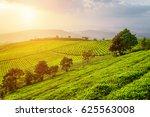 amazing view of tea plantation...   Shutterstock . vector #625563008