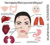 face mapping. what your acne... | Shutterstock .eps vector #625650050