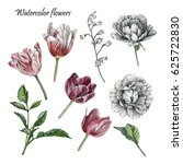 flowers set of watercolor... | Shutterstock . vector #625722830