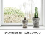 cactus in flower pots in a... | Shutterstock . vector #625729970