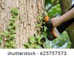 sports running shoes | Shutterstock . vector #625757573