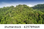 rainforest. aerial view of... | Shutterstock . vector #625789664