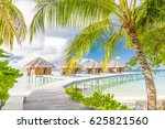 coconut palms and luxury water... | Shutterstock . vector #625821560