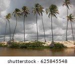 Punau Tropical Beach  Lagoon ...