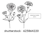 carnation flowers drawing and... | Shutterstock .eps vector #625864220
