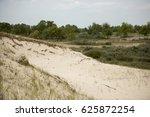sand dunes in letea forest   in ... | Shutterstock . vector #625872254