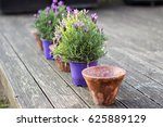 Vintage Style Flower Pots And...