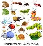 different types of insects... | Shutterstock .eps vector #625976768