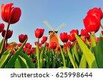windmill around tulips at...   Shutterstock . vector #625998644