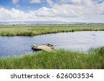 observation deck in the marshes ...   Shutterstock . vector #626003534