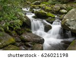 Gushing Mountain Stream
