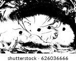 black and white liquid texture  ... | Shutterstock .eps vector #626036666