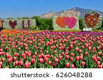 tulips with flaming mountain at ... | Shutterstock . vector #626048288
