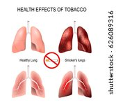 health effects of smoking.... | Shutterstock . vector #626089316