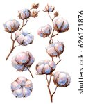 watercolor hand drawn... | Shutterstock . vector #626171876