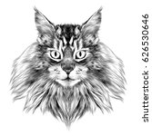 Cat Breed Maine Coon Face...