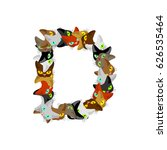 Letter D Cat Font. Pet Alphabe...