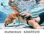 underwater action. smiley woman ... | Shutterstock . vector #626655143