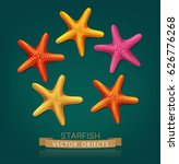 vectorial starfish isolated on...   Shutterstock .eps vector #626776268