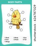 illustration of bird vocabulary ... | Shutterstock .eps vector #626787329