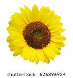 sun flower white background | Shutterstock . vector #626896934