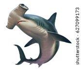 Hammerhead Shark On White....