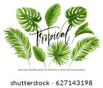 tropical palm leaves set... | Shutterstock .eps vector #627143198