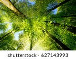 rays of sunlight falling... | Shutterstock . vector #627143993