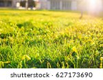 field of spring flowers and... | Shutterstock . vector #627173690