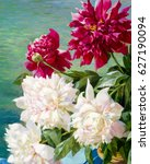 texture  background. the...   Shutterstock . vector #627190094