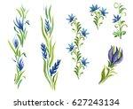 watercolor flowers in different ... | Shutterstock . vector #627243134
