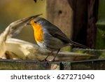 robin | Shutterstock . vector #627271040
