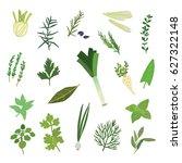herbs spices green vector... | Shutterstock .eps vector #627322148