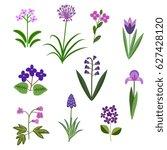 violet vector flowers... | Shutterstock .eps vector #627428120