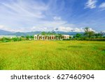 beautiful baldcypress garden... | Shutterstock . vector #627460904
