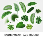 tropical leaves set isolated ... | Shutterstock .eps vector #627482000