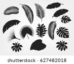 silhouette tropical leaves set...