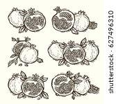 hand drawn vector pomegranate...   Shutterstock .eps vector #627496310