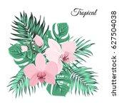 elegant tender pink orchid... | Shutterstock .eps vector #627504038