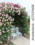 Stock photo climbing pink roses in garden 627525608