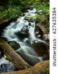Forest Stream In Blakeny...
