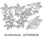 gardenia flower branch graphic... | Shutterstock .eps vector #627640628
