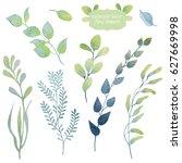hand drawn wild green plants...   Shutterstock . vector #627669998