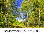 spring forest landscape | Shutterstock . vector #627740183