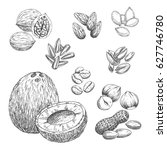 nuts sketch icons of coconut ... | Shutterstock .eps vector #627746780