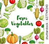 farm vegetables sketch poster.... | Shutterstock .eps vector #627749240