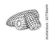 Corn Cob Hand Drawn Vector...