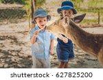 little boy feeding deer in farm.... | Shutterstock . vector #627825200