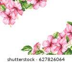 pink hibiscus flower isolated... | Shutterstock . vector #627826064